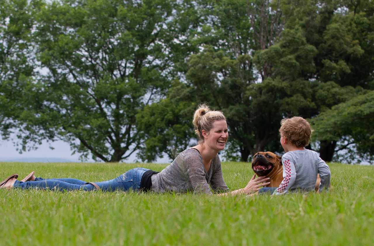 Brown staffordshire bull terrier panting and lying in between a mother and her child on the grass, brown staffie panting and lying in between a mother and her child on the grass